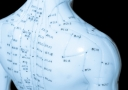 Model of the human body with acupuncture points - Doctor Mosaraf Ali